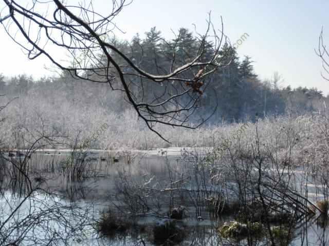 First Snow Dec 2009 Franklin MA 7