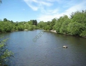 Spruce Pond condos Franklin MA - water view 1