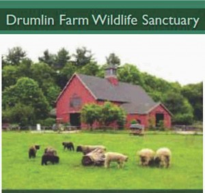Drumlin Farm Wildlife Sanctuary Lincoln MA