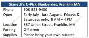 Blueberry-Franklin-MA-Gianettis-U-Pick-info